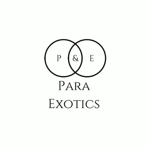 Para Exotics
